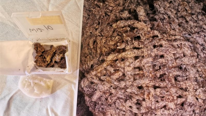 Oldest Yarn Thread Fabric In History Has Been Discovered
