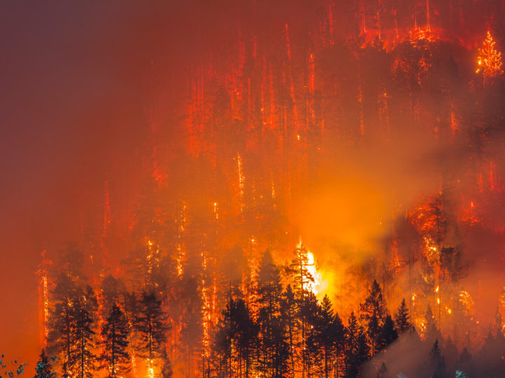 Could Wildfires Have Long-Term Health Effects?