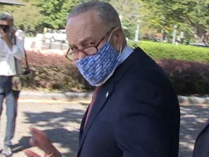 Sen. Schumer Says Let Voters Wear Candidate Tees to Polls, Guns a 'Bad Idea'