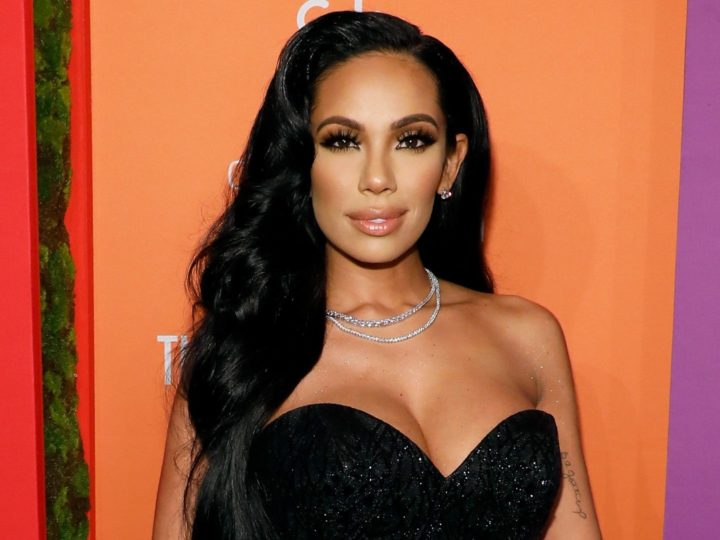 Erica Mena Net Worth, Wiki, Bio, Age, Height, Boyfriend, Family