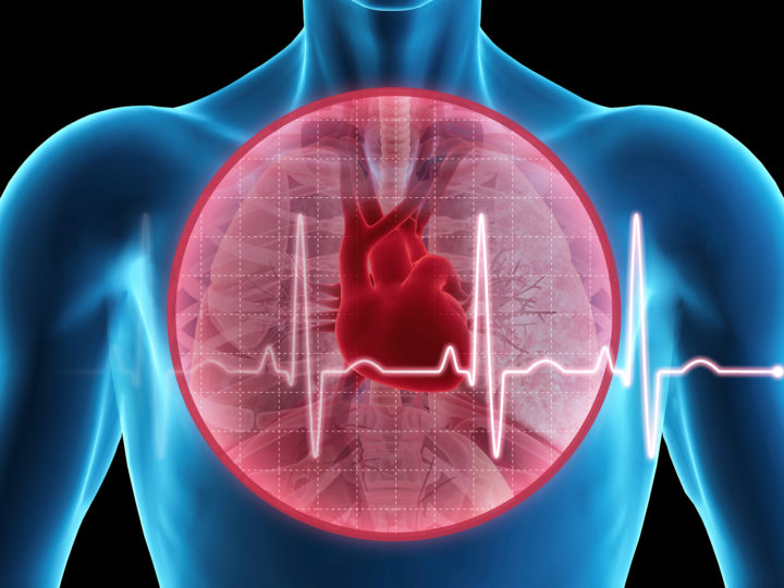 Drop in Resting Heart Rate in Youth 'Not a Good Thing'
