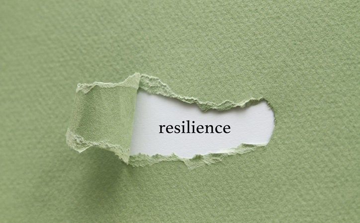 Seeking solace, finding resilience in a pandemic – Harvard Health Blog