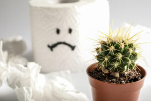 Roll of toilet paper with sad smile and cactus on white background;  painful hemorrhoids concept