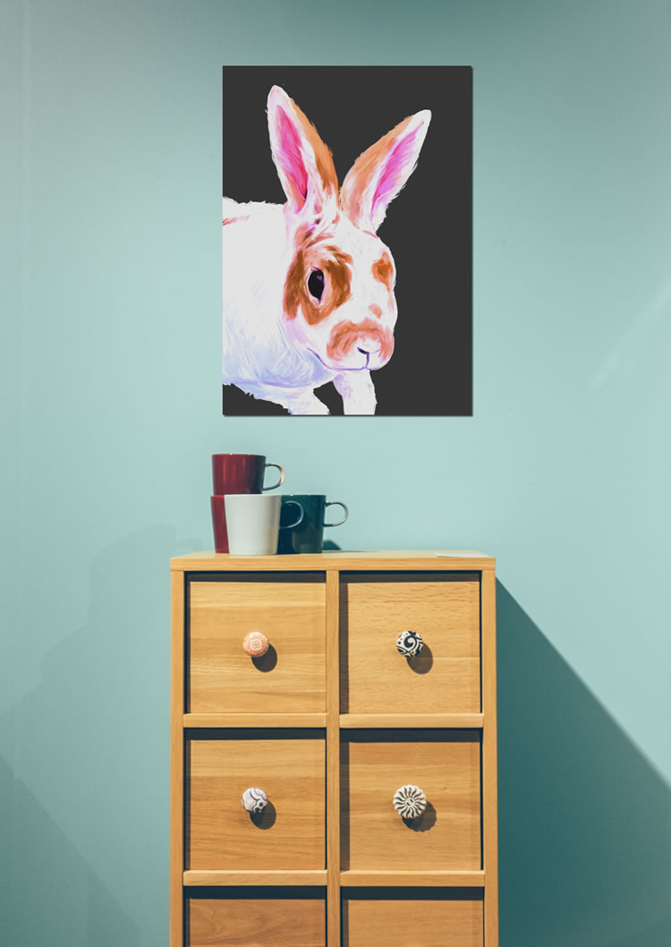 white and brown rabbit on black background poster poster