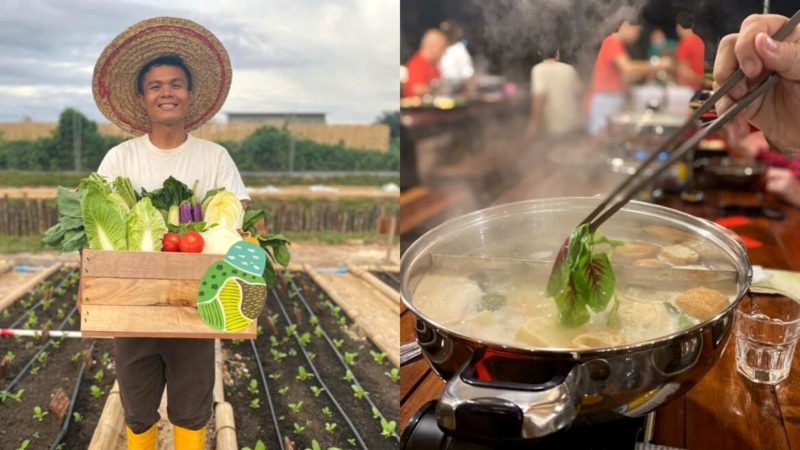 Farm-To-Table Vegetarian Hotpot In Puchong